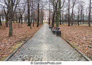 Path from stone tiles for pedestrian walks in a modern city park