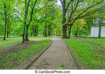 A path for pedestrians to walk in a modern green city park in the summer daytime