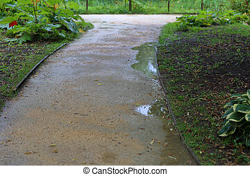 Path for pedestrians in the summer park