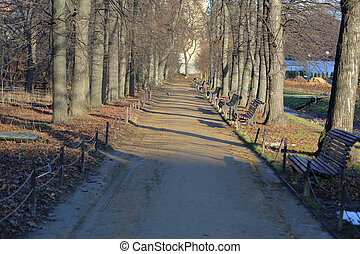 Trampled path for walking pedestrians in a winter city park without people