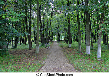 Path for walks in the park