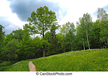 Path in a hilly green park. Spring landscape.