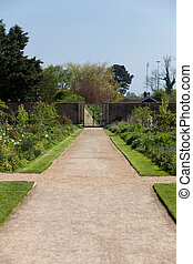 Path in a lush garden
