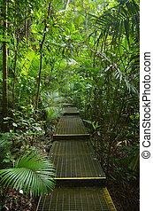Path in Australia