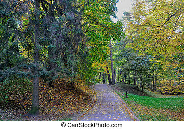 Path in autumn park