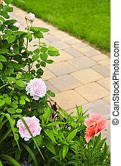 Path in blooming garden