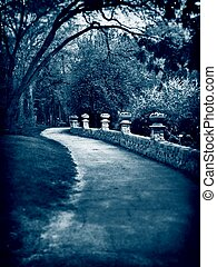 Path in blue tone - Paved path with blue hue