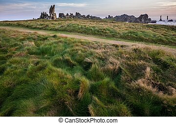 Path in coastline meadow