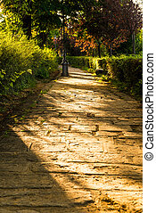 Path in Italy with a beautiful sunset