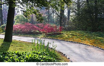 Path in Japanese garden in spring
