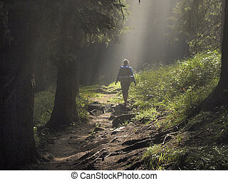Path in the enchanted forest - Female hiker walking under...