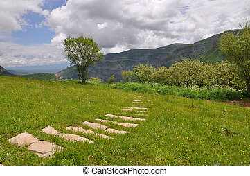 Path in the Grass