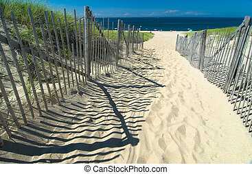 Path in the sand heading to the beach