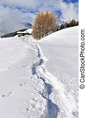path in the snowy mountain