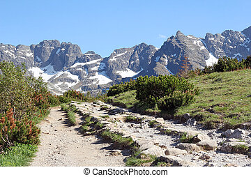 path in the Tatra Mountains, Poland