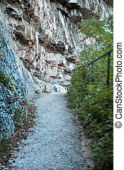 path in the trees and rocks