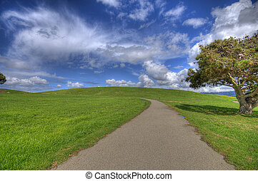 Path on green landscape