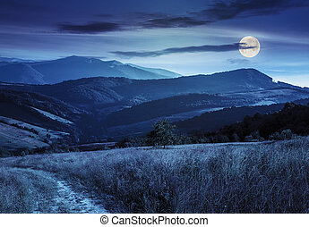 path on hillside meadow in mountain at night