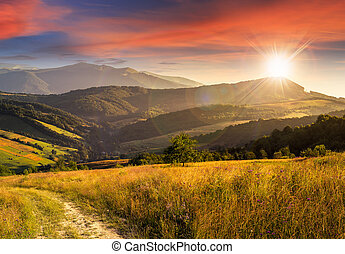 path on hillside meadow in mountain at sunset