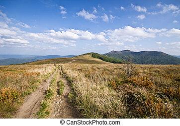Path on the peak