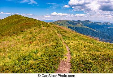 path on top of Carpathian mountain ridge. beautiful summer...
