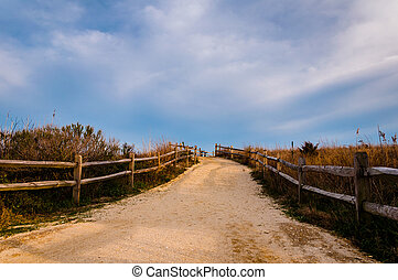 Path over sand dunes to the beach, Cape May, New Jersey.