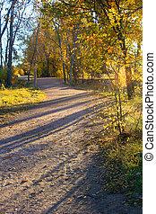 Path Shadows
