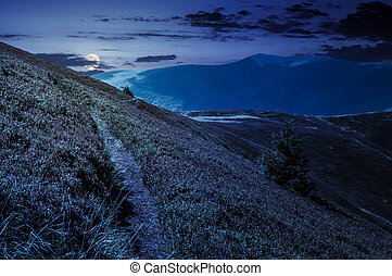 path though mountain hills and ridge at night in full moon...