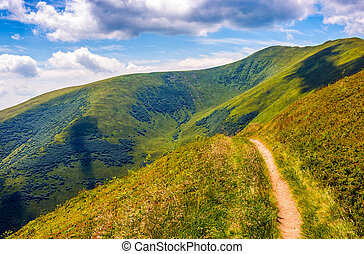 path through a meadow on hillside - winding road through...