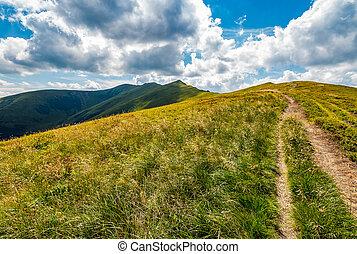 path through a meadow to mountain peak - path through a...