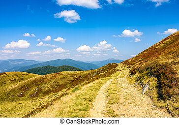 path through a meadows of mountain ridge - winding path...
