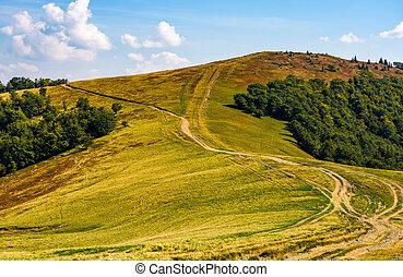 path through alpine mountain ridge
