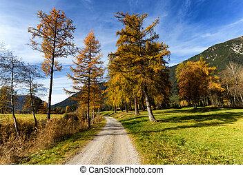 Path through autumn mountain landscape. Mieminger Plateau, Austria, Tyrol.