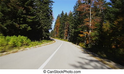 Path through Autumn Woods - Path through Autumn Woods...