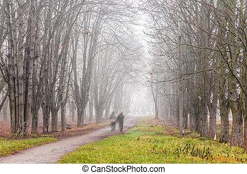 path through foggy autumn park - people walking by path...