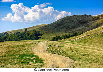 path through hill side meadow in Carpathians - early autumn...