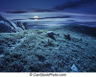 path through hillside with white boulders at night - path...