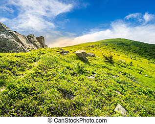 path through hillside with white boulders at sunrise - path...