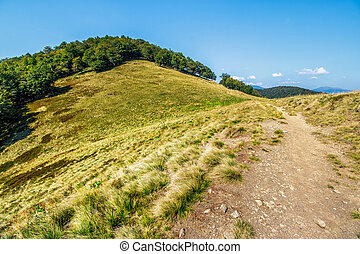 path through mountain landscape - mountain landscape. path...