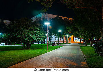 Path through park at night with city lights in background
