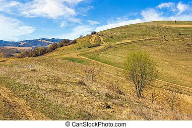 path through rural fields in mountains - Spring time rural...