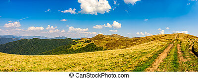 path through the Carpathian mountain ridge - path through...