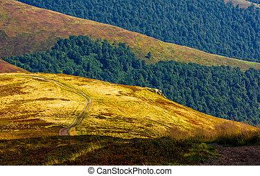path through the mountain hill in summer - summer mountain...