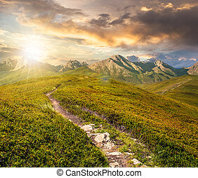 path through the mountain ridge - composite summer landscape...