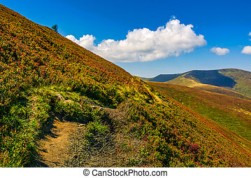 path through the mountain ridge - summer mountain landscape....