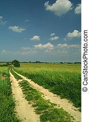 path through wheat fields