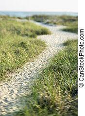 Path to beach. - Sandy pathway to beach on Bald Head Island,...