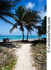 Path to deserted Caribbean beach with old abandoned boat