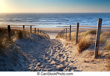 path to North sea beach in gold sunset sunshine, North Holland, Netherlands