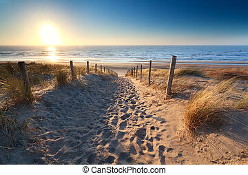 path to sand beach in North sea, Zandvoort aan zee, North...